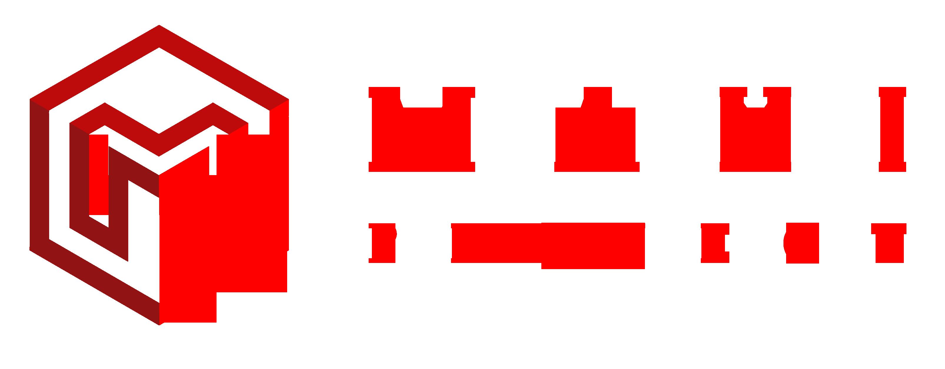 MAXI-project